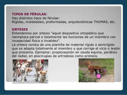 Férulas y Ortesis